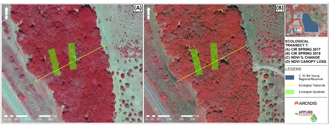 Color-infrared (CIR) aerial imagery for Ecological Transect 7 during (a) Spring 2017 and (b) Spring 2018.